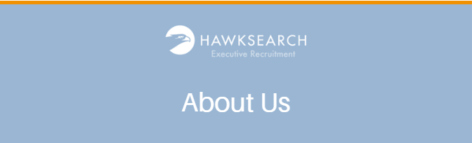 Hawk Search About US